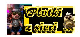 June Plotki_z_sieci