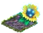 springcleanmar2016arcanesunflower.png