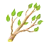 breedingmar2016branch.png